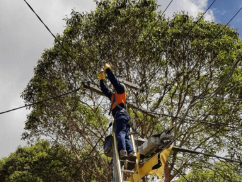 Overhead cables and pole replacement - Level 2 Electrician Parramatta 2150